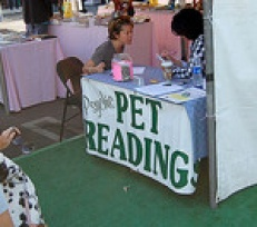 Can a Pet Psychic Really Help Me Communicate with My Pet?